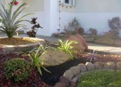 professional landscaping and lawn 954 224 5119/ free designs