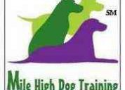 Mile high dog training, llc and pet care services